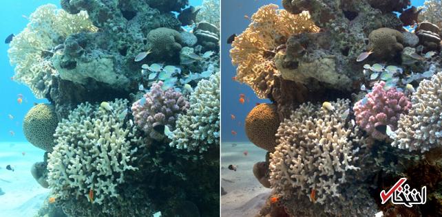 الگوریتمی جدید که رنگهای اقیانوس را واقعی تر نمایش می دهد